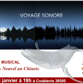image-voyage-28-janv